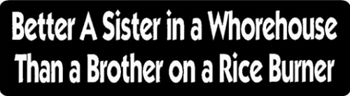 BETTER A SISTER IN A WHOREHOUSE THAN A BROTHER ON A RICE BURNER HELMET STICKER